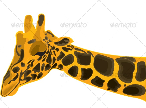 Wild giraffe in fine detail and captivating shades - Animals Characters