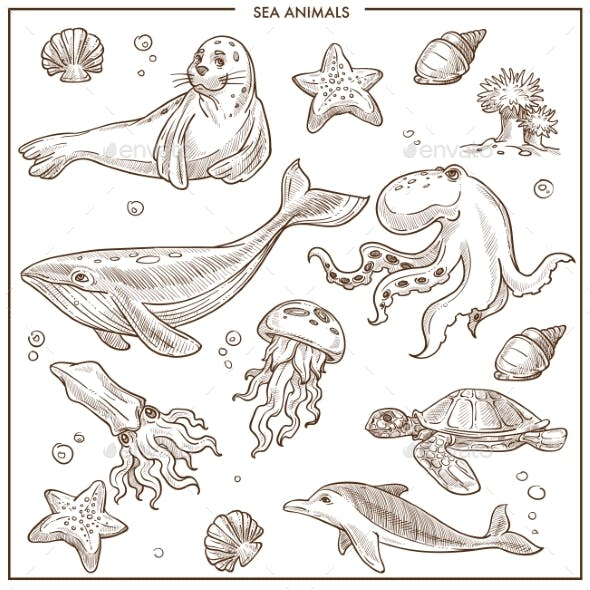 Sea and Ocean Animals or Fish Vector Sketch