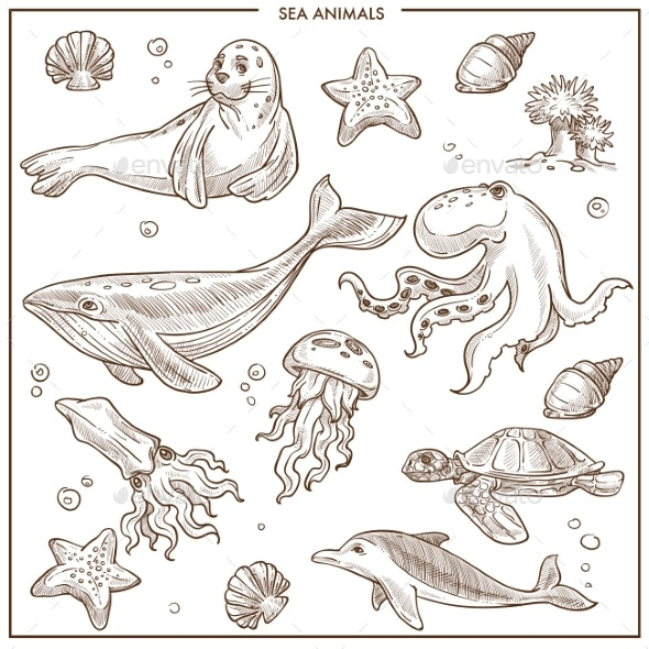 Sea and Ocean Animals or Fish Vector Sketch - Animals Characters
