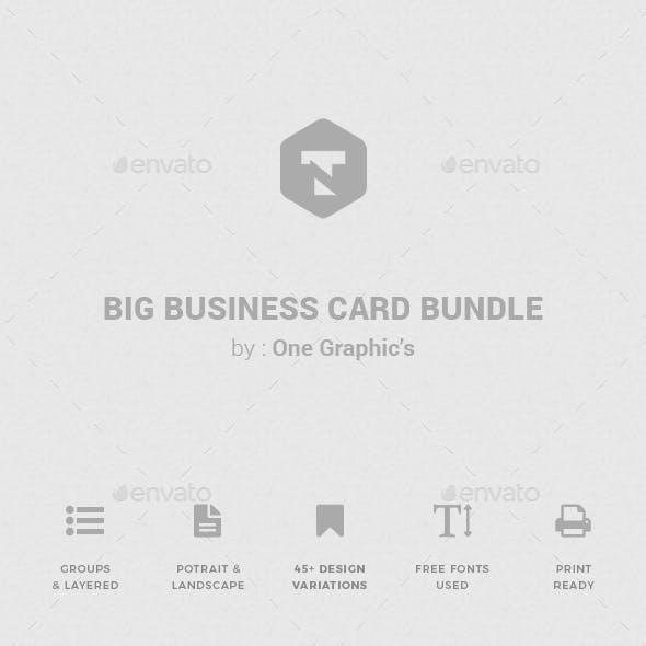 Minimalist Business Card Bundles