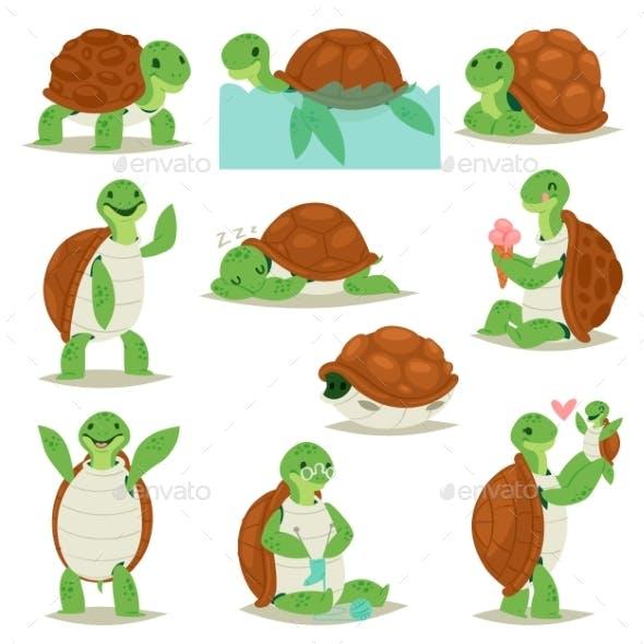Turtle Vector Cartoon Seaturtle Character Swimming