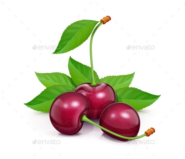 Three Cherries with Green Leaves - Food Objects