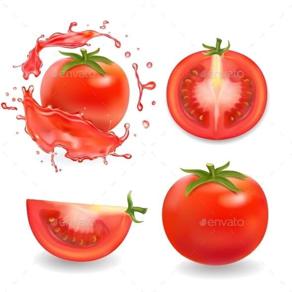 Tomatoes Isolated Realistic Illustration