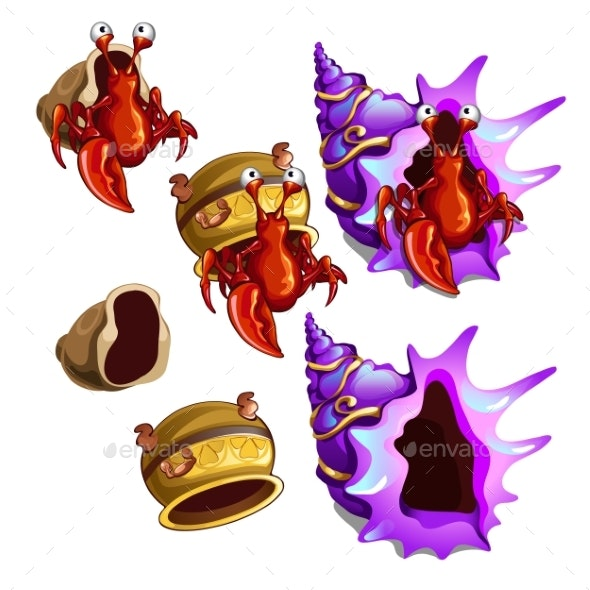 Set of Habitats for Hermit Crab Isolated on White - Animals Characters