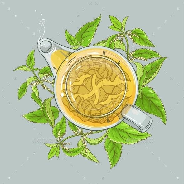 Nettle Tea Illustration - Health/Medicine Conceptual
