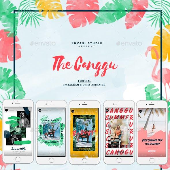 Canggu-Tropical Instagram Stories Animated