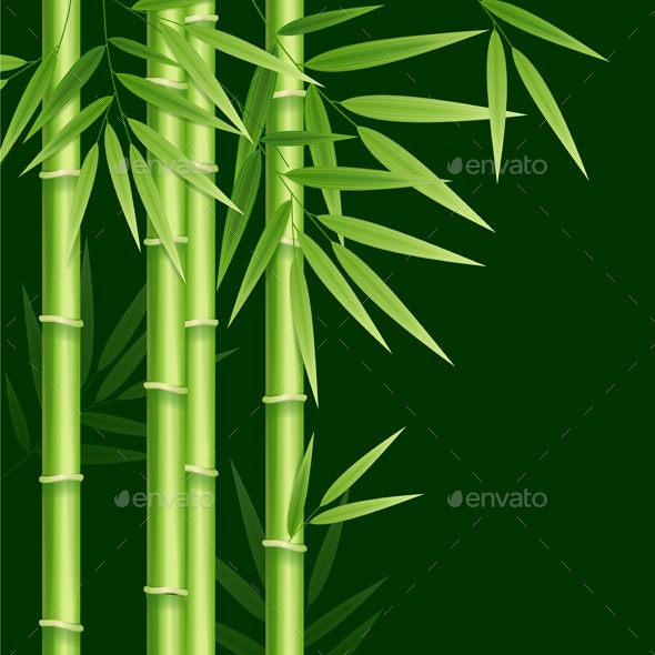 Realistic Detailed Bamboo Background Card - Backgrounds Decorative