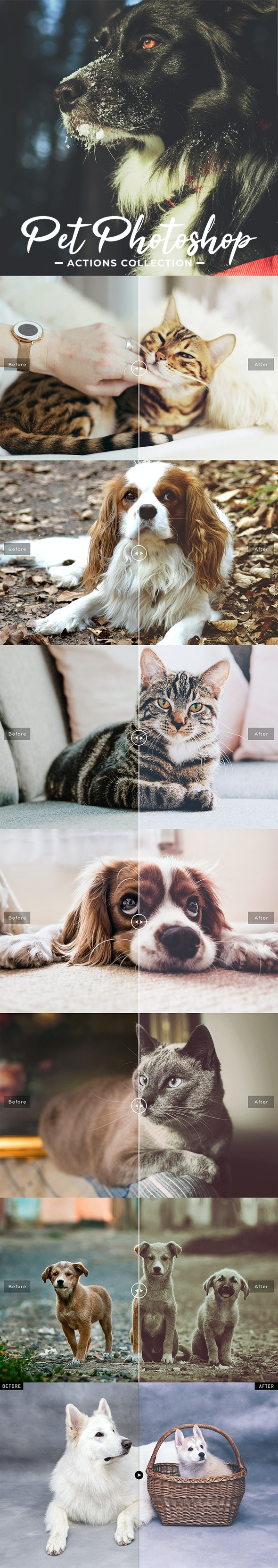 Pet Photoshop Actions Collection - Actions Photoshop