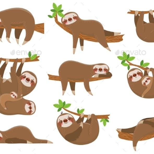 Cartoon Sloths Family