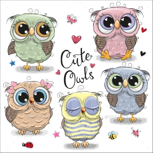 Set of  Cartoon Owls on a White Background - Animals Characters