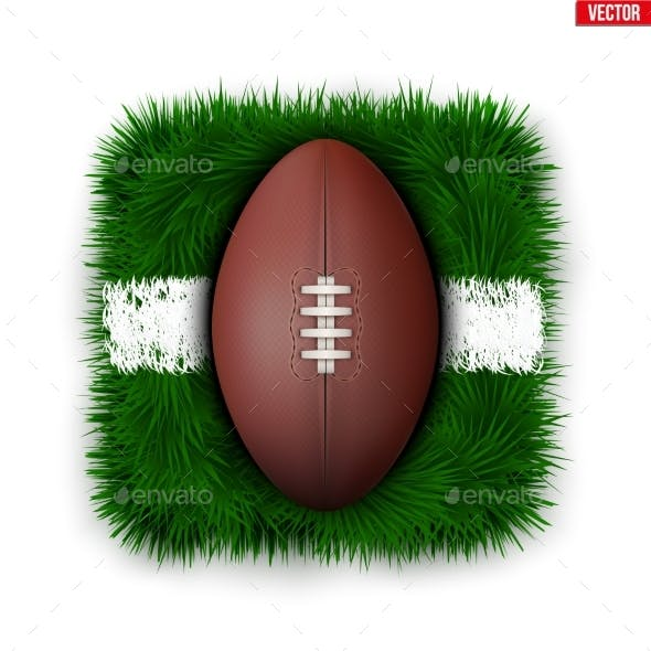 Icon of Football Field Ball on Grass
