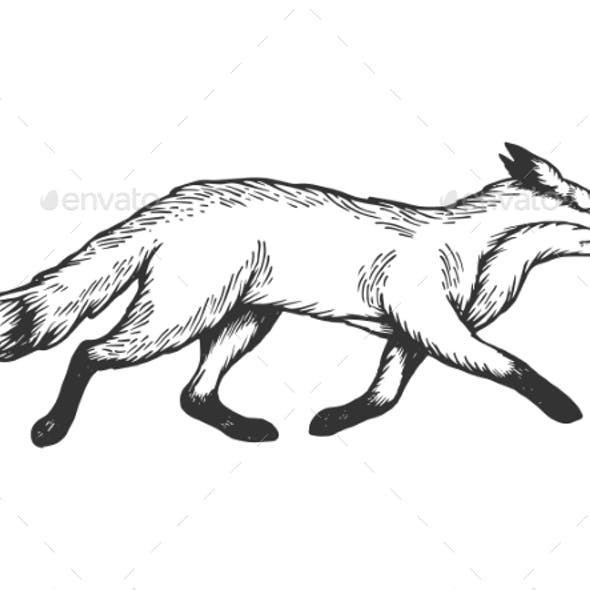 Running Fox Animal Engraving Vector Illustration