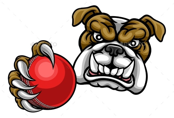 Bulldog Dog Holding Cricket Ball Sports Mascot - Sports/Activity Conceptual