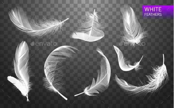 Set of Isolated Falling White Fluffy Feathers - Miscellaneous Vectors