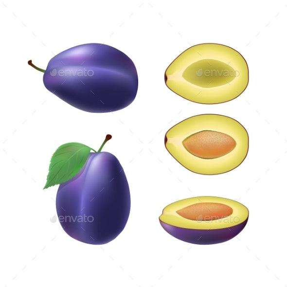 Set of Isolated Colored Plum - Food Objects