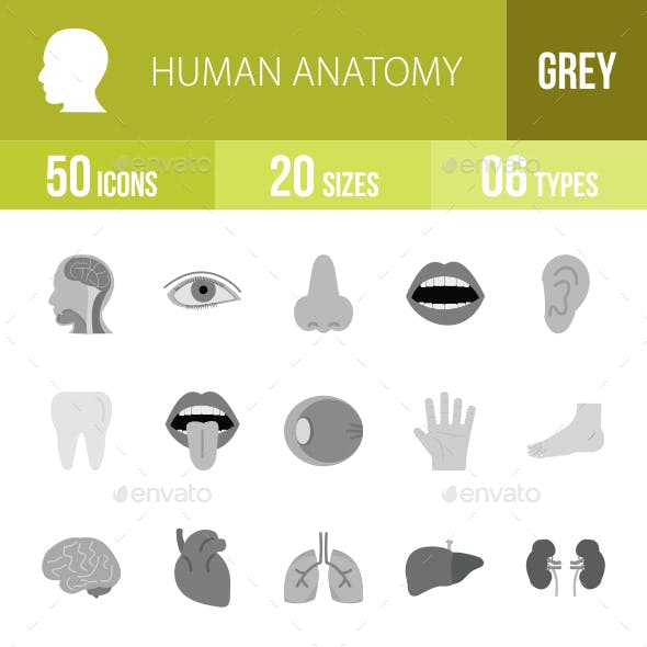 Human Anatomy Flat Round Icons