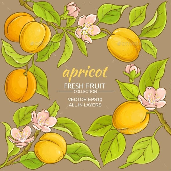 Apricot Vector Frame