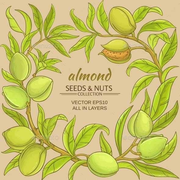 Almond Vector Frame - Food Objects