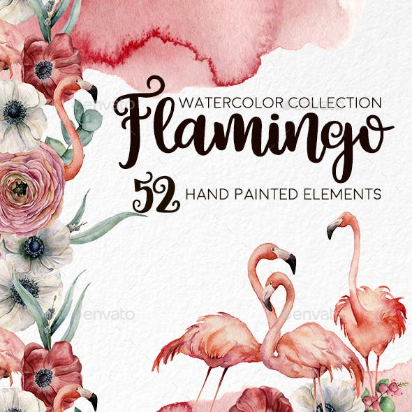 Flamingo. Watercolor Collection