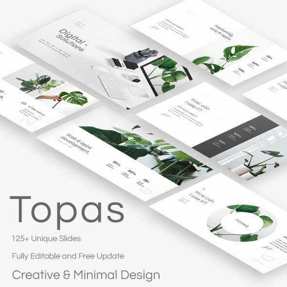 Topaz Template Graphics, Designs & Templates from GraphicRiver