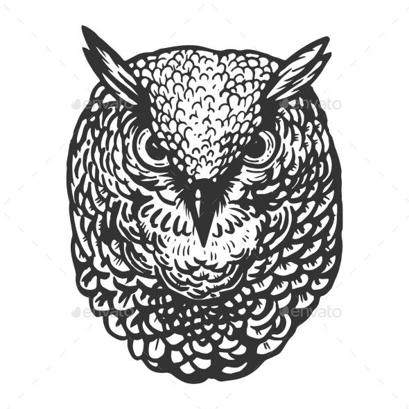 Owl Bird Head Animal Engraving Vector - Miscellaneous Vectors