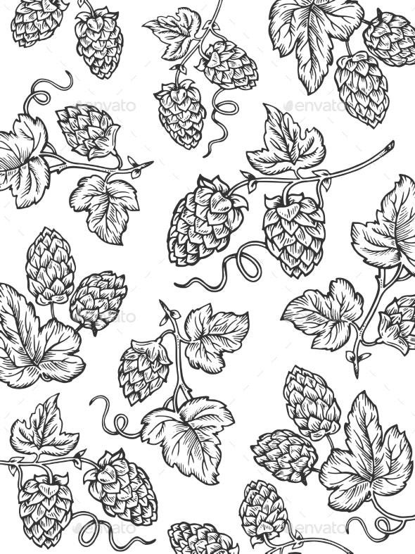 Hops Background Coloring Cartoon Vector - Food Objects