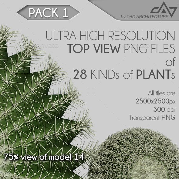 Top View Plants Pack 1