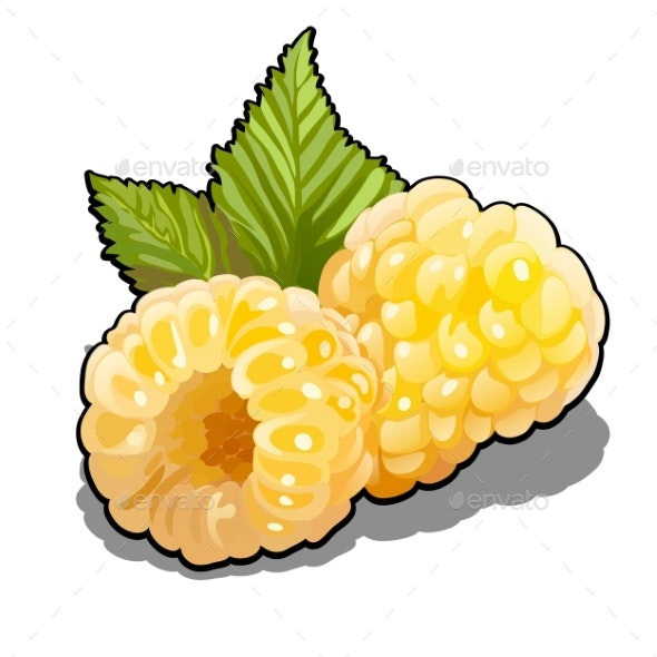 Set of Yellow Raspberries Fruits - Food Objects