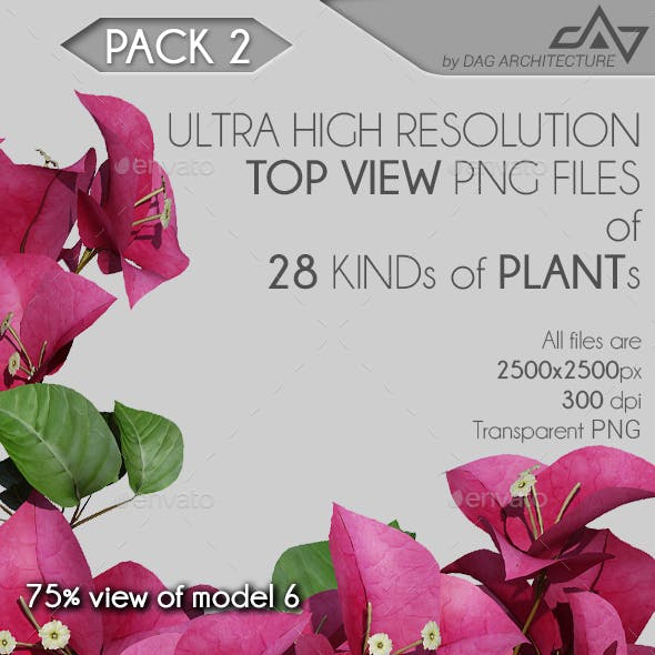 Top View Plants Pack 2