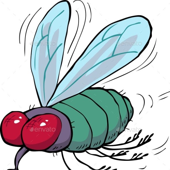 Cartoon Green Fly