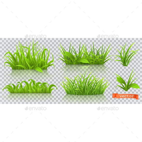 Spring Green Grass - Flowers & Plants Nature