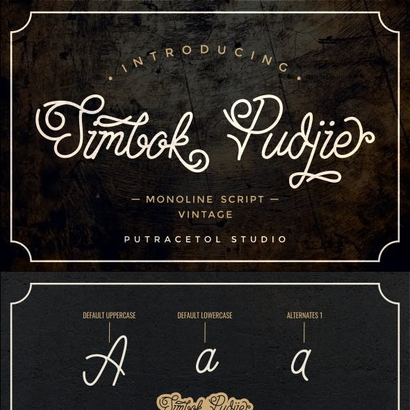 Modern and Retro Cursive Fonts from GraphicRiver