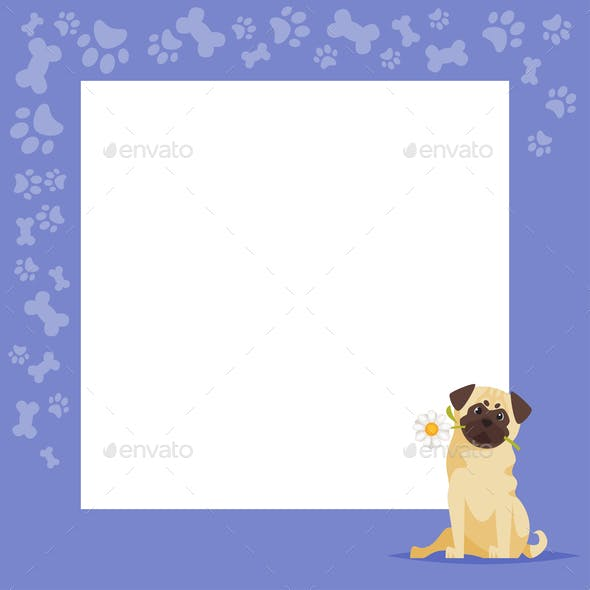 Pug Background