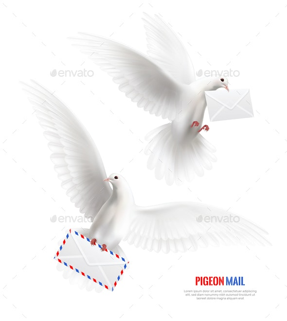 White Pigeons Set - Animals Characters