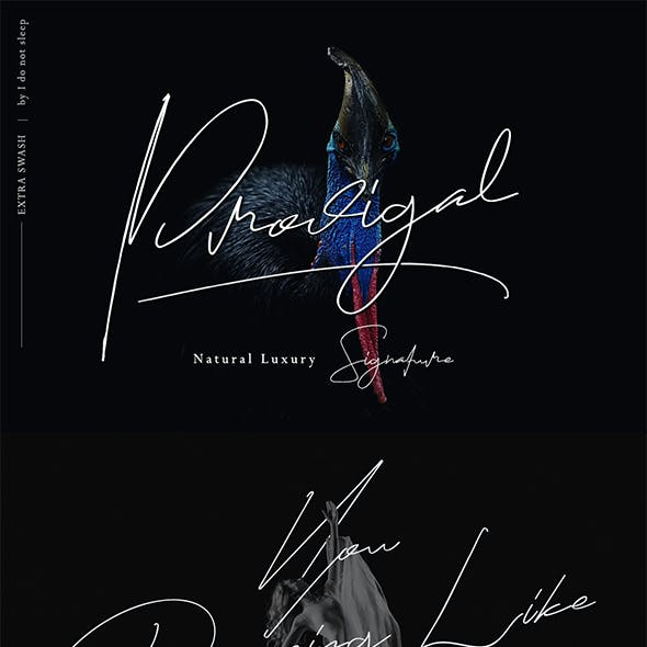 Prodigal Signature