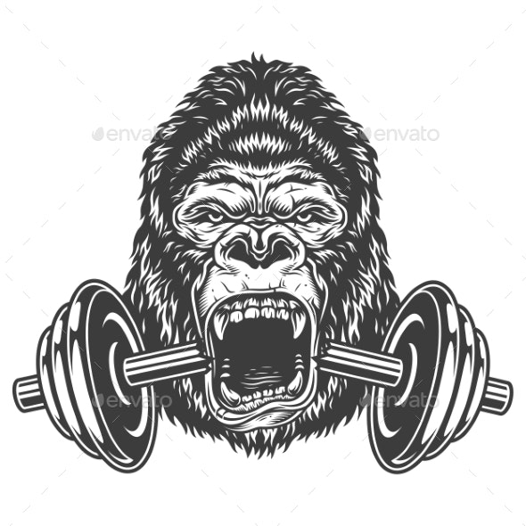 Bodybuilding Concept with Gorilla - Animals Characters