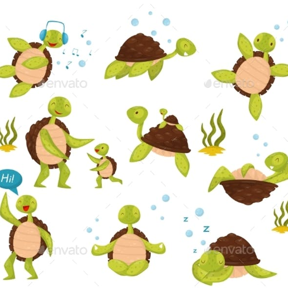 Flat Vector Set of Turtles