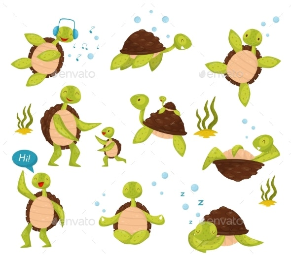 Flat Vector Set of Turtles - Animals Characters