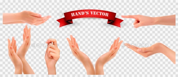 Set of Hands on Transparent Background Vector - People Characters