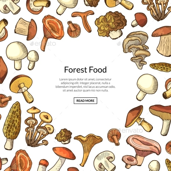 Vector Hand Drawn Mushrooms Background - Backgrounds Decorative