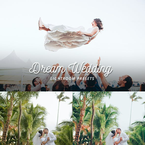 14 Dream Wedding presets