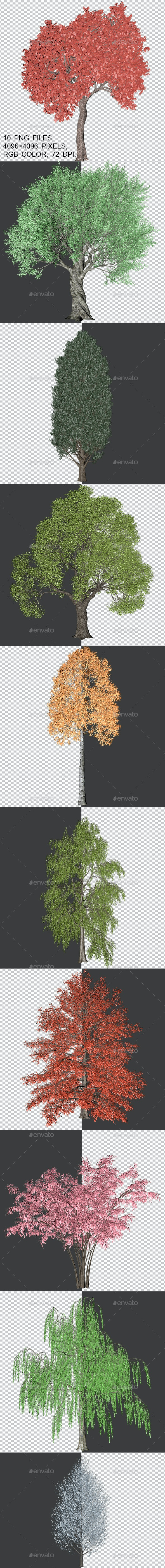 Packing Trees With Alpha Channel - Objects 3D Renders