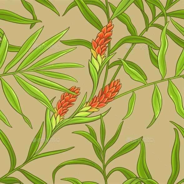 Ginger Vector Pattern - Food Objects