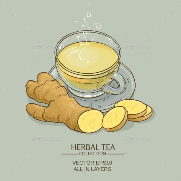 Ginger Tea Illustration - Food Objects