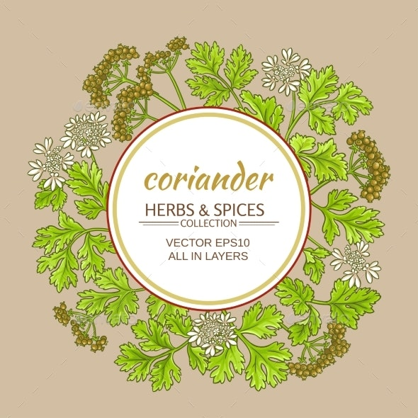 Coriander Vector Frame - Food Objects