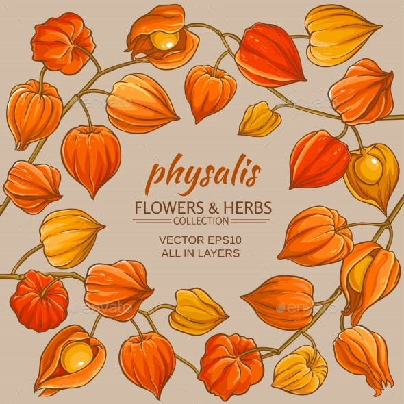Physalis Vector Frame