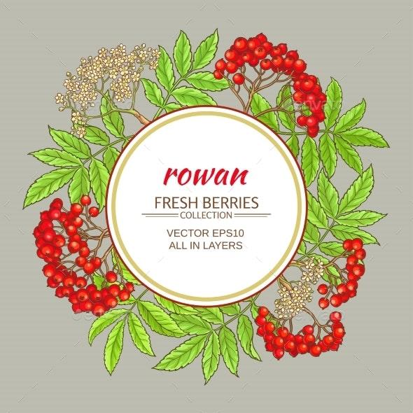 Rowan Vector Frame - Flowers & Plants Nature