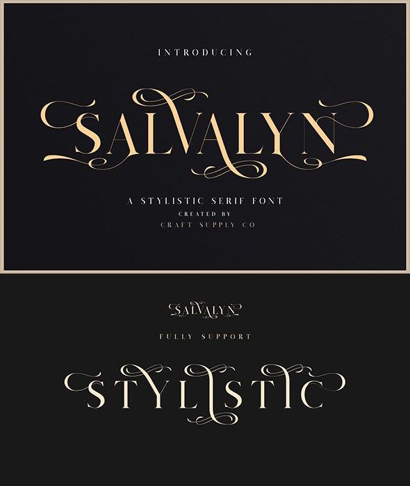 Salvalyn - Stylistic Serif Font - Serif Fonts