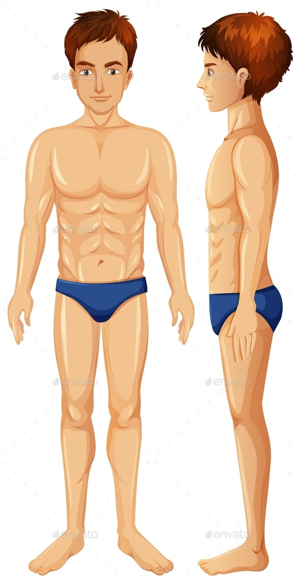 Vector of Man Body - People Characters