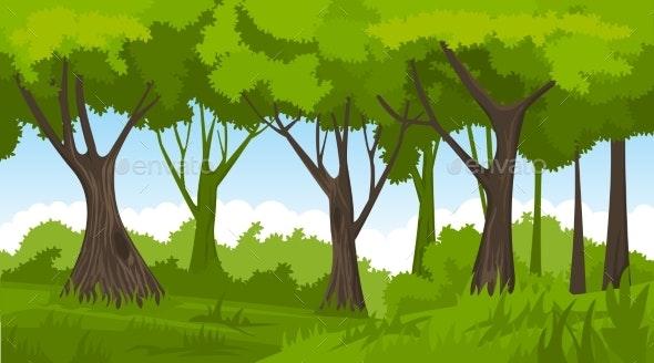 Summer Forest - Landscapes Nature